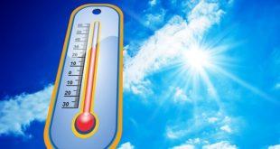 Sommer Hitze Beschwerden