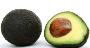 Avocado Kern Tipps