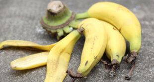 Gesundheits-Booster: Darum sind Bananenschalen so gesun